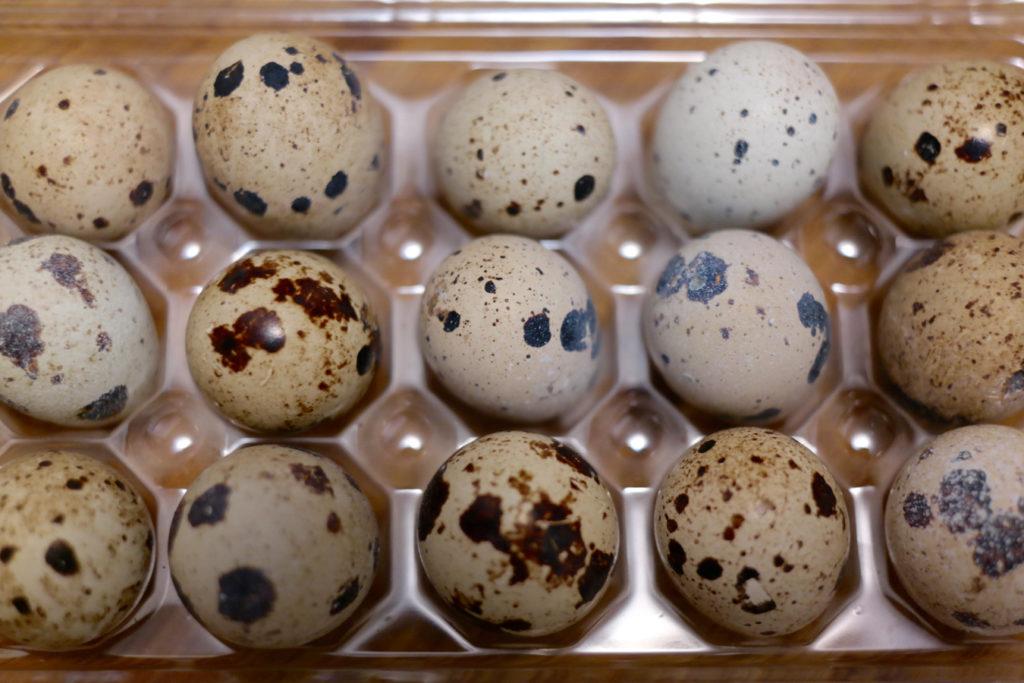 quail eggs_1350x900